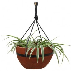 Convenience Concepts Planters and Potts Hanging Planter   553373935