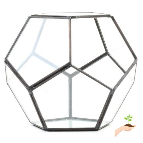 Koyal Wholesale Pentagon Geometric Table Glass Terrarium