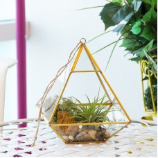 Mindful Design Geometric Diamond Desktop Garden Planter Glass Terrarium