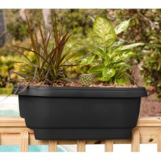 Charlton Home Fellows Resin Rail Planter
