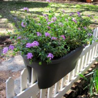 Oval Flower Bridge Planter, Eggplant   551600962