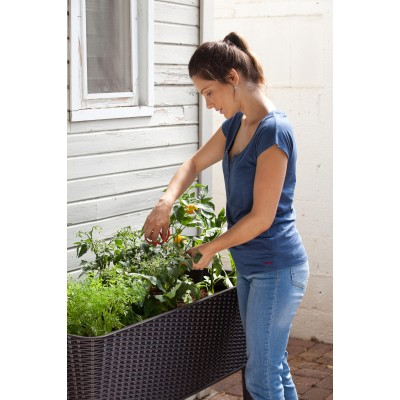 Keter Easy Grow Elevated Garden Bed, Anthracite   568261778
