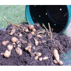 City Pickers Spud Tub Potato Grow Kit – Works Great on Decks and Patios – Low Maintenance & High Potato Yields   568170641